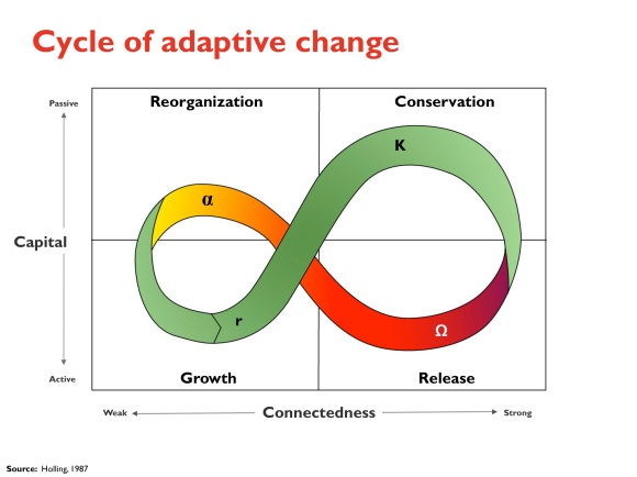 cycle of adaptive change