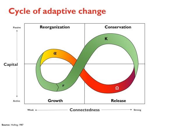 cycle of adaptive change