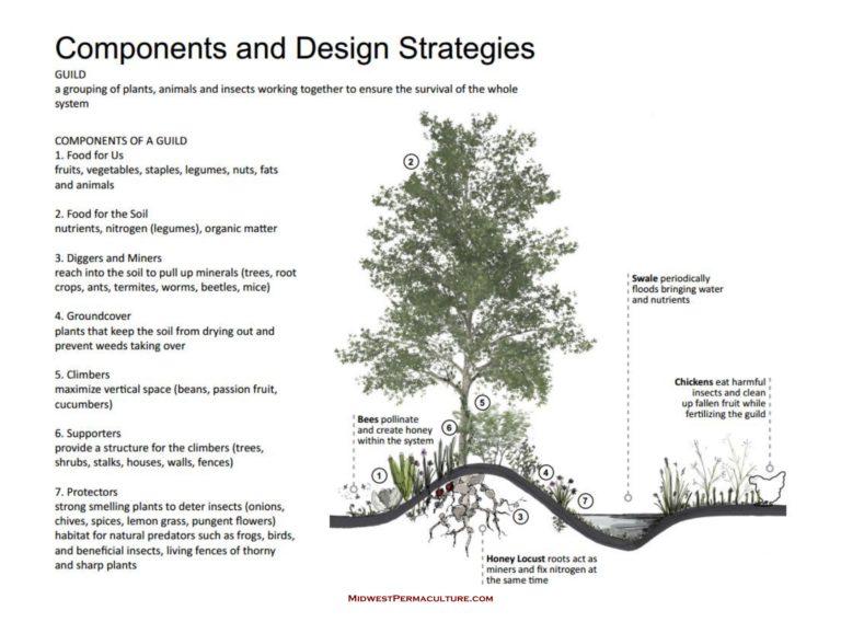 design_strategies-768x568